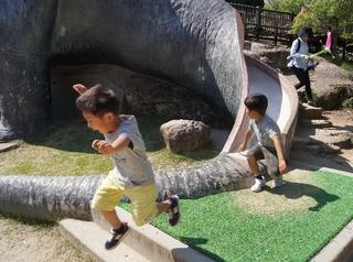 恐竜2.jpg