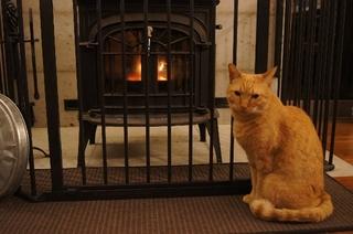 暖炉前で5.jpg
