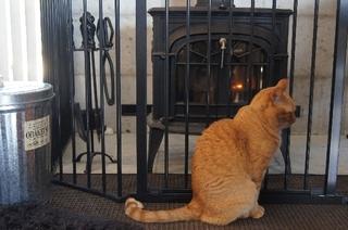 暖炉前で6.jpg