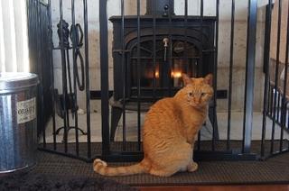 暖炉前で7.jpg